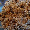 Thai Beef Massaman Curry - Making the paste – Menu Marker