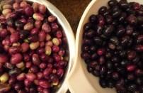 Ross's Olives - Sorted - 1